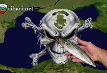 Черно море вече е мъртво море