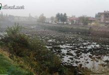 Алчност! Река Въча в района на Кричим пресъхна, рибата измря