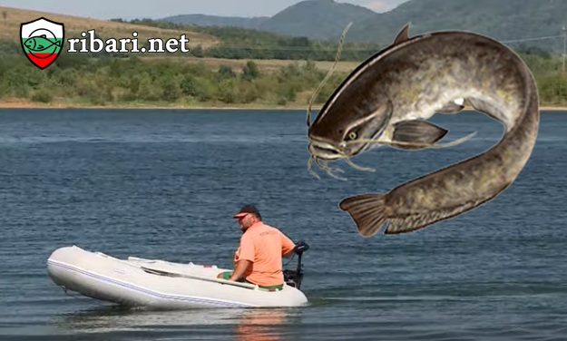 Риболов на сом на БУЙ + ВИДЕО