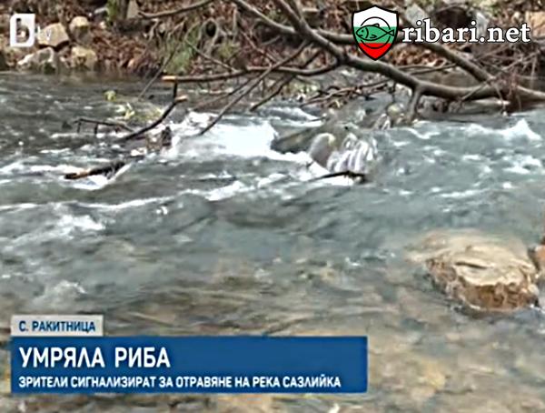 Сигнал за отравяне на река Сазлийка