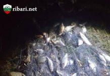 Заловиха бракониер на язовир Съединение край Търговище