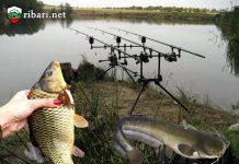 5 Стъпки как да хванем трофейна риба