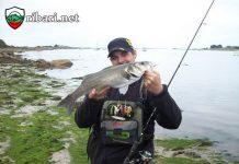 Риболов на Лаврак в Турция ribari.net