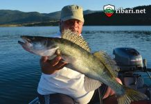 Риболов на влачене