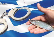 На риболов в Гърция! Какво трябва да знаете за да не ви глобят?