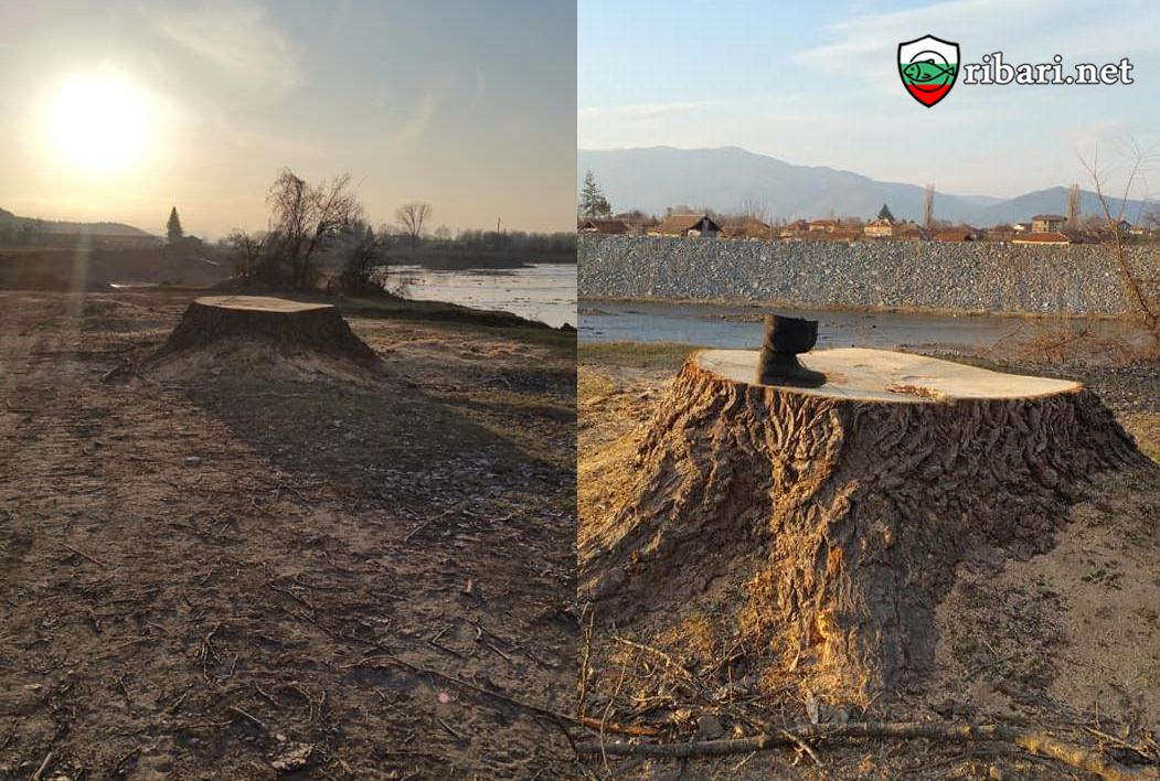 Сигнал до община Мъглиж помощ за река Тунджа