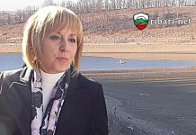 Мая Манолова: Изправете се и се борете за това, което обичате!