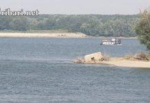 Растението което трови рибата в Дунав се нарича бича глава.