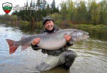 Риболов на таймен в Сибир: Риболов – 2020