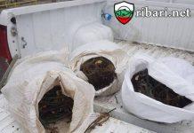 Служители на ИАРА - Бургас иззеха 350 метра мрежи за улов на калкан