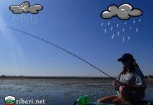 5 практически съвета за риболов по време на дъжд