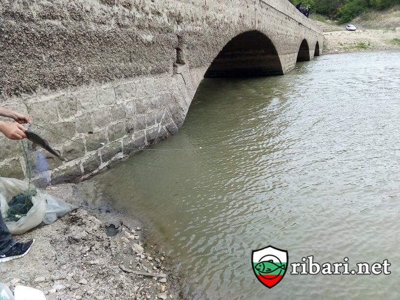 Масирани проверки на инспектори от ИАРА - Варна