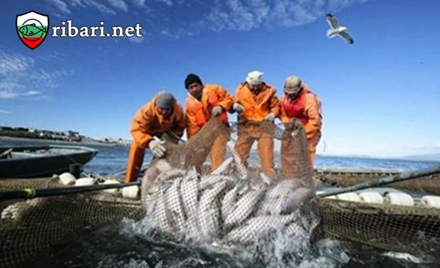 Европейските рибари вече могат да ловят риба в марокански води