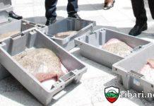 ИАРА дари иззета риба на социалния патронаж в Каварна
