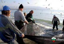 Подпомагат рибари, рибовъди, собственици на риболовни кораби заради загубите им от COVID-19